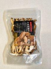 画像6: 【新価格】うみかぜ椎茸生&乾燥品フルセット (6)
